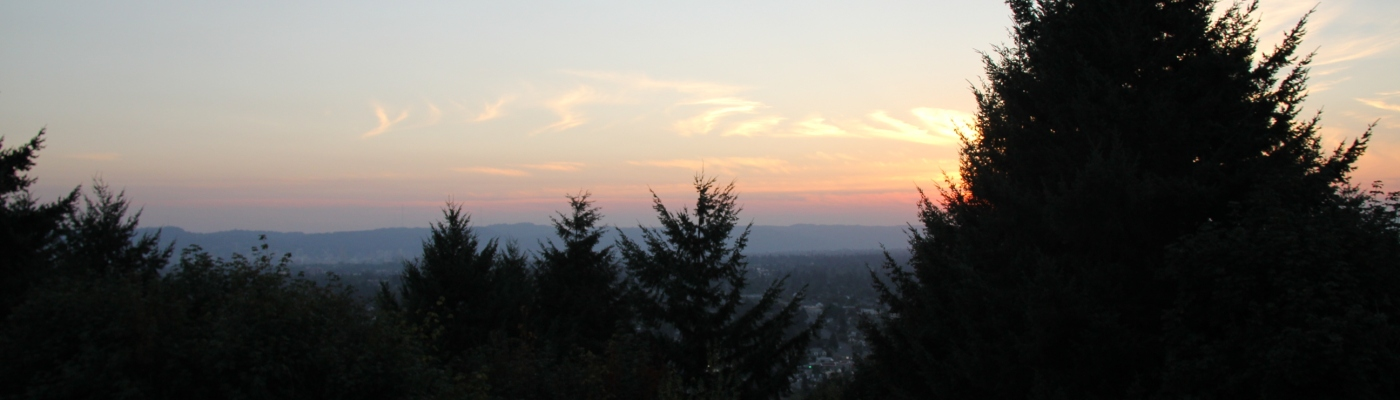 Taken at sunset in east Portland, OR.