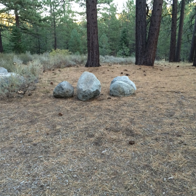 Here is some Rocks/Boulders in front of some tree's in the Sierra Nevada Mountains.